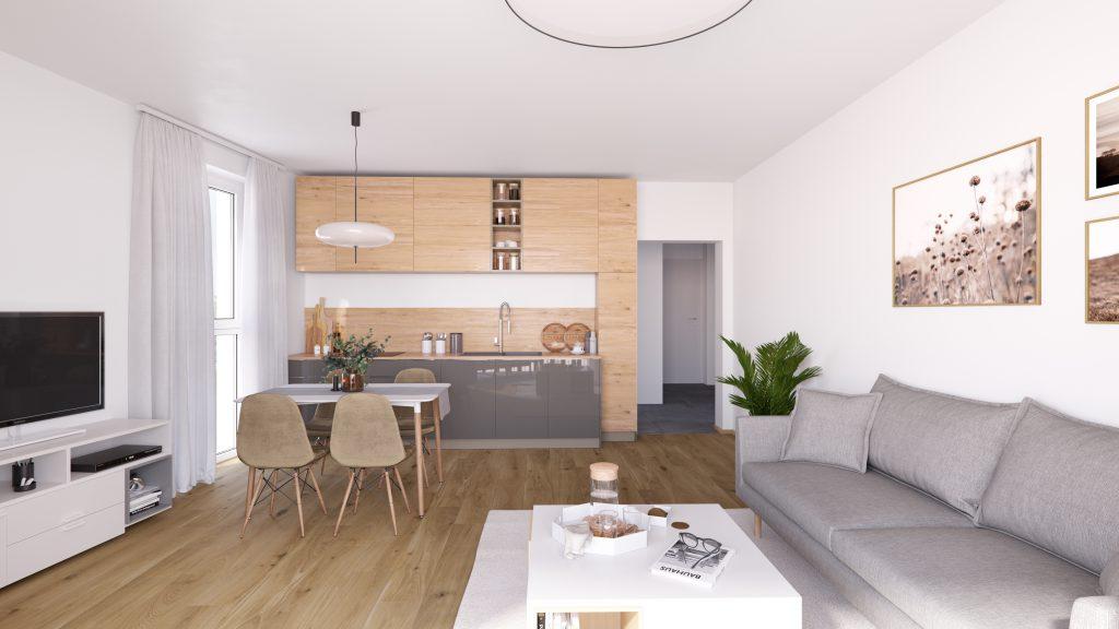 Projekt Flurgasse - 2-Zimmerwohnung Ansicht vom Balkon in den Wohnbereich